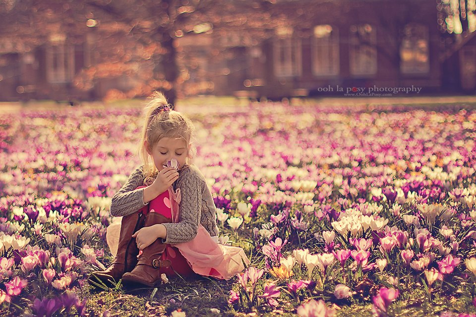 Caitlin in the crocuses - Houston Child Photographer