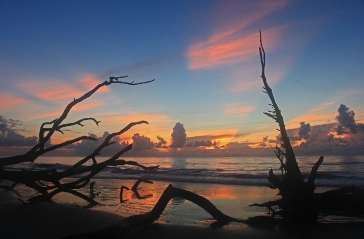 Emerald Coast Reflections - Hunting Island, SC