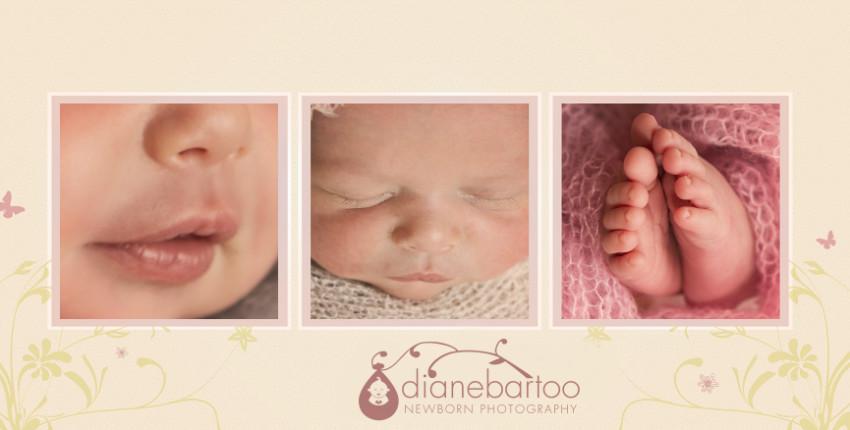 newborn details photo