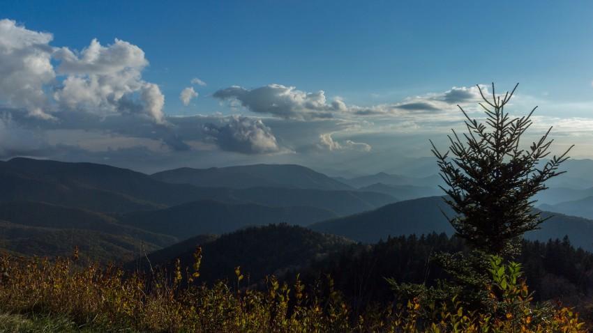 Cowee Mountain Overlook Field Trip